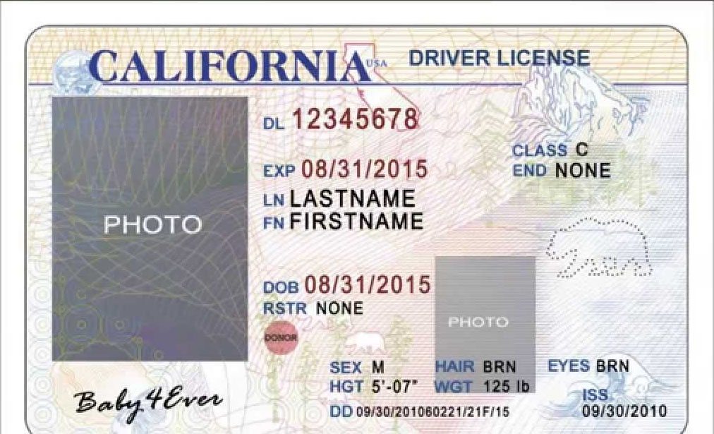 In Pakistanis Driving For World Apply A License - Usa